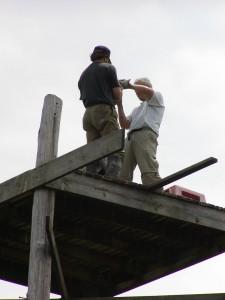 Bryan Watts and Shawn Padgett band peregrine chicks on the Metompkin tower