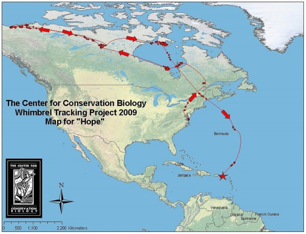 Hope's migration through mid-January 2010