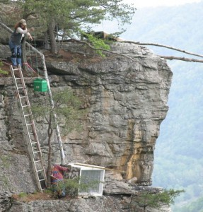 Installation of a new hack box at New River Gorge Nat'l River, WV