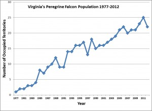 Virginia's Peregrine Falcon Population 1977-2012