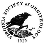VSO logo