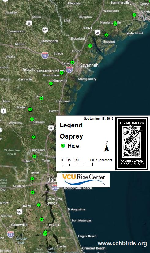 Rice moves south through Florida.