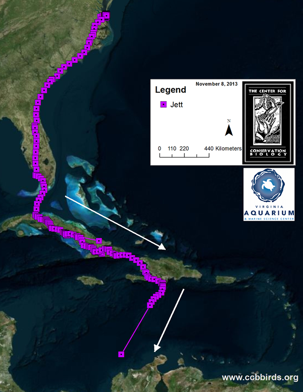 We lost Jett's signal on the last leg of his migration south in fall 2013. The weather changed on his flight across the Caribbean Ocean and we believe he was lost at sea.