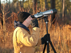 Mike Wilson uses a spotting scope to identify individually banded red-cockaded woodpeckers within the Piney Grove Preserve. Photo by Bryan Watts.