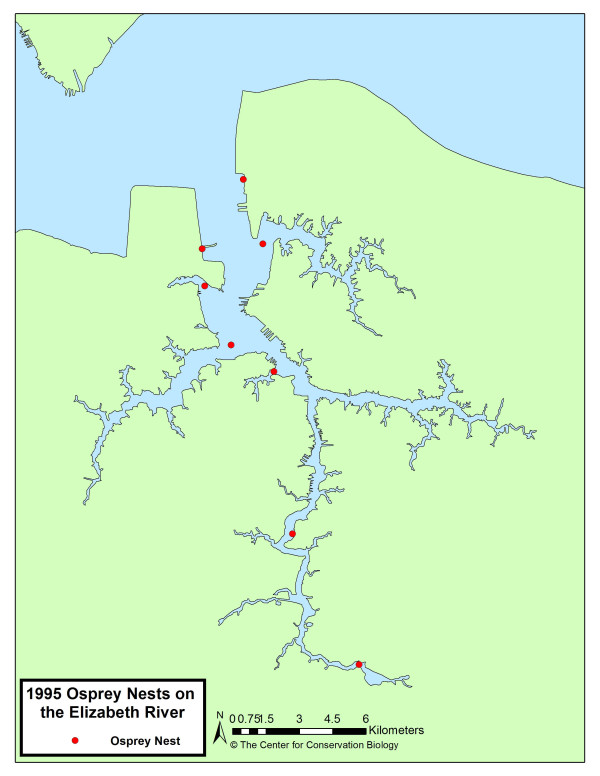 Map of osprey pairs along the Elizabeth River from the 1995 survey.
