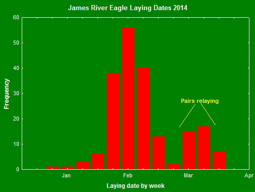 Distribution of clutch initiation dates for the James River in 2014. The second peak represents pairs that have failed early in the season and recycled to produce a second clutch. Data from The Center for Conserv