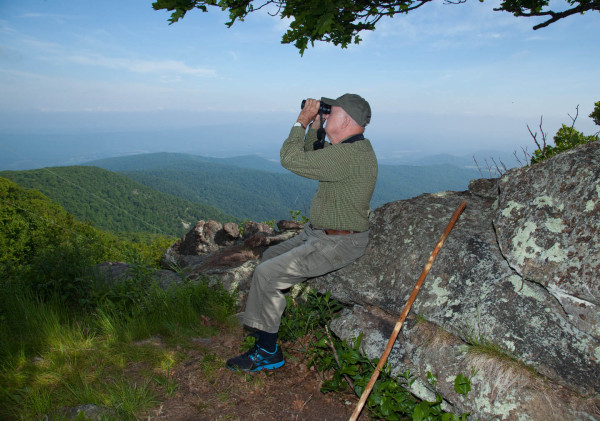Mitchell Byrd perched on a rock at Hogback Mountain hack site watching the spectacle of peregrines on the wing. Photo by Bryan Watts.