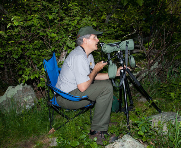 Rolf Gubler using a spotting scope to identify individual peregrines within the Hogback Mountain hack site. Photo by Bryan Watts.