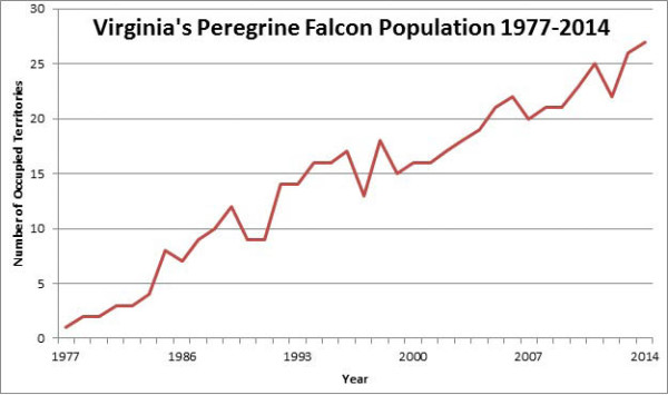 Breeding peregrine falcons in Virginia from 1977-2014. Data from CCB.
