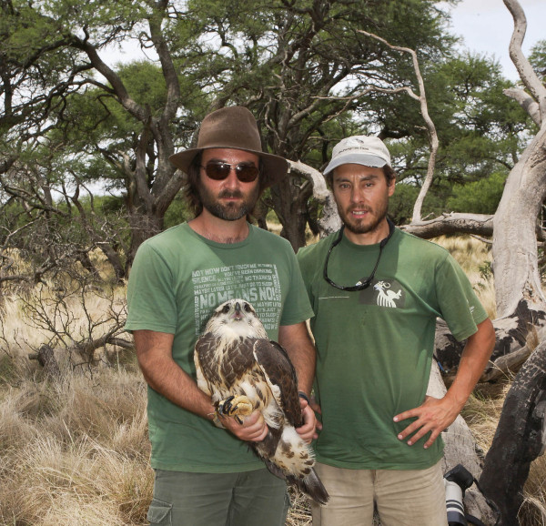 Dr. Jose Sarasola (left) holds a nestling crowned eagle with PhD. student Maxi Galmes (right). Photo by Bart Paxton.