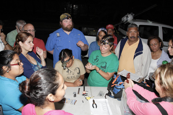 Agency biologists, local media and members of Panama Audubon come out for an evening of shorebird banding. Panama Audubon staff Stefani Carti (left) and Yenifer Diaz (right) demonstrate banding techniques as Fletcher Smith from CCB looks on. Photo by Bart Paxton.