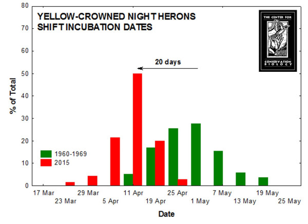 Comparison of yellow-crowned night heron incubation dates in 2015 and the 1960s in Tidewater Virginia. Yellow-crowns are arriving earlier and laying eggs earlier compared to the 1960s. Data from CCB.