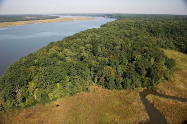 An aerial view of the Fones Cliffs property approved for development by Richmond County Board of Supervisors. Photo by Bill Portlock.