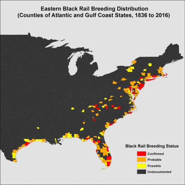 Map of counties with historic (1836-2016) credible records of eastern black rails during the breeding period (1 April through 31 August). Data from CCB.