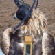 A golden eagle fitted with a GSM transmitter in Highland County, Virginia.
