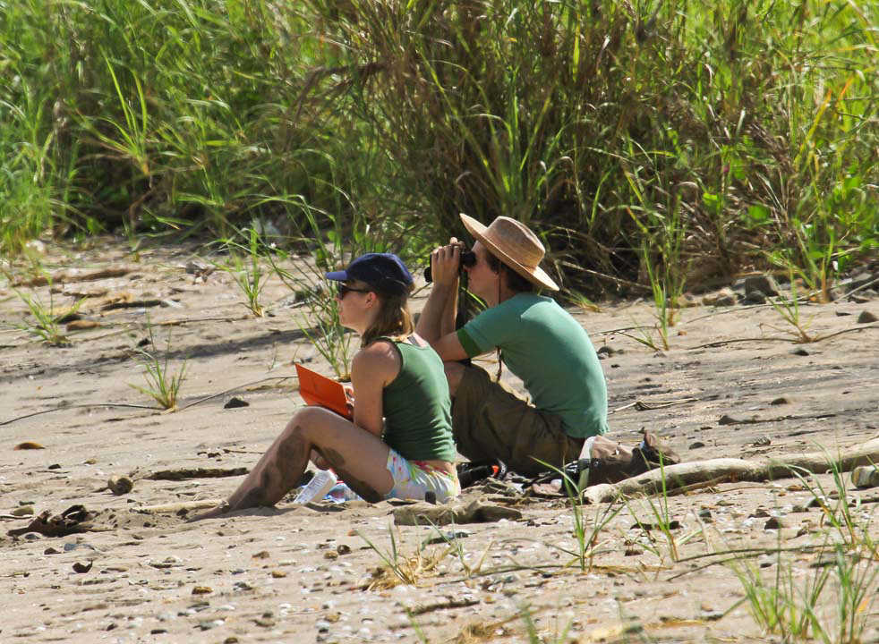 Alex and Ben collecting foraging data – Alex Studd-Sojka and Ben Duke trade off recording and collecting foraging data along Veracruz Beach. Foraging data was collected within timed intervals for several priority species in order to compare habitat quality between field sites.