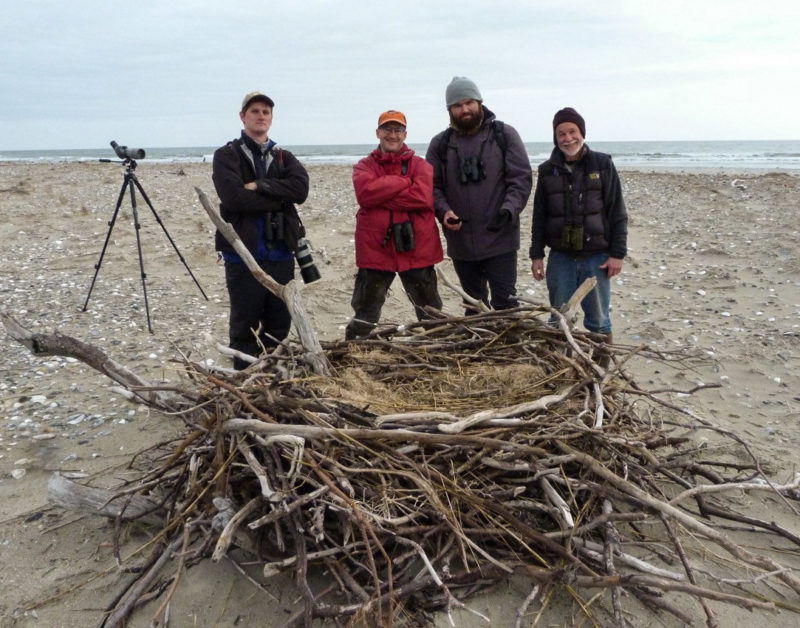 Christmas Bird Count crew pose with a new eagle nest on the north end of Smith island