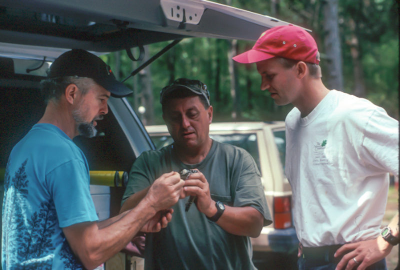 Don Schwab, Rick Barnett  and Brian VanEerden feed a cricket to a woodpecker