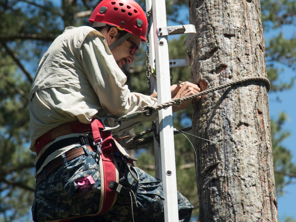 Chance Hines pulls young woodpeckers from a cavity