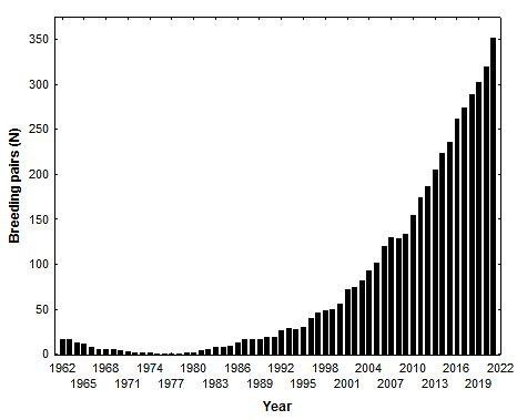 Graph illustrating the history of the bald eagle breeding population along the James River since 1962.