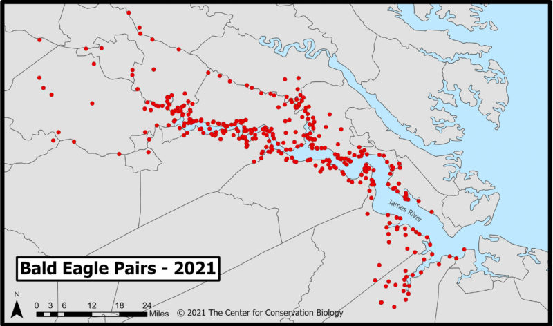 Map of current (2021) occupied territories of bald eagles along the James River.