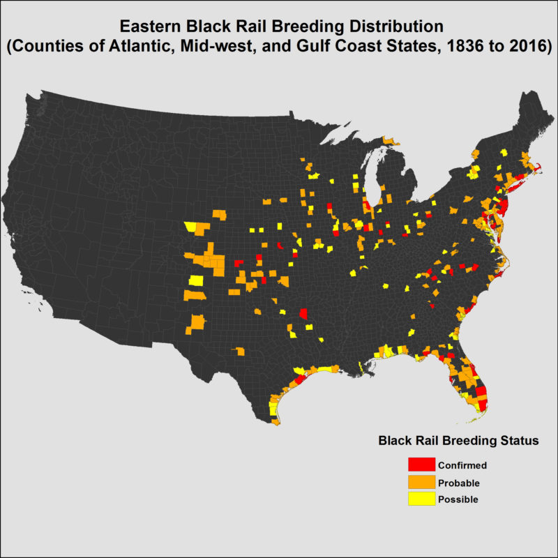Map of eastern black rails by county from 1836 to 2016.