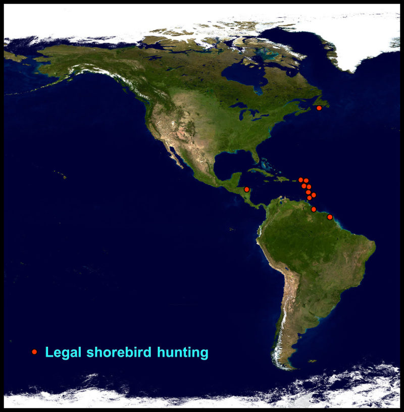 Map of the Western Hemisphere highlighting jurisdictions with hunting