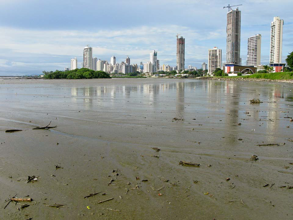 Mudflats around Panama City – Panama City is built along the Pacific shoreline and one of the more unusual characteristics of this site is the extreme tidal range that at times may exceed 20 feet. This extreme tidal range leaves vast mudflats exposed during low tides that may extend out from the shoreline more than 2 kilometers. The expansive flats extend along the shoreline to the east for more than 100 km making them the largest in Central America.