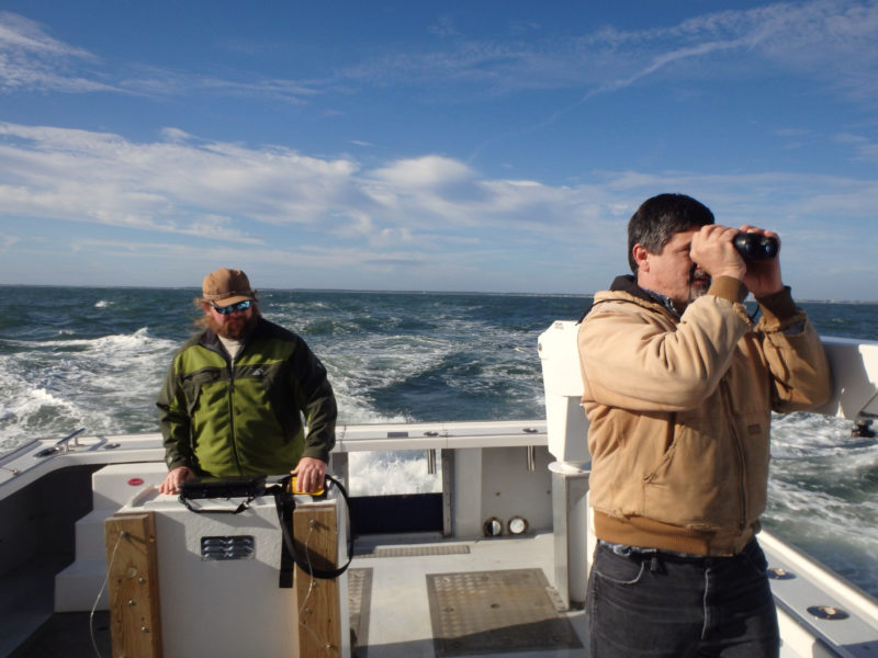 Ned and Fletcher Smith conduct offshore seabird surveys for a wind energy