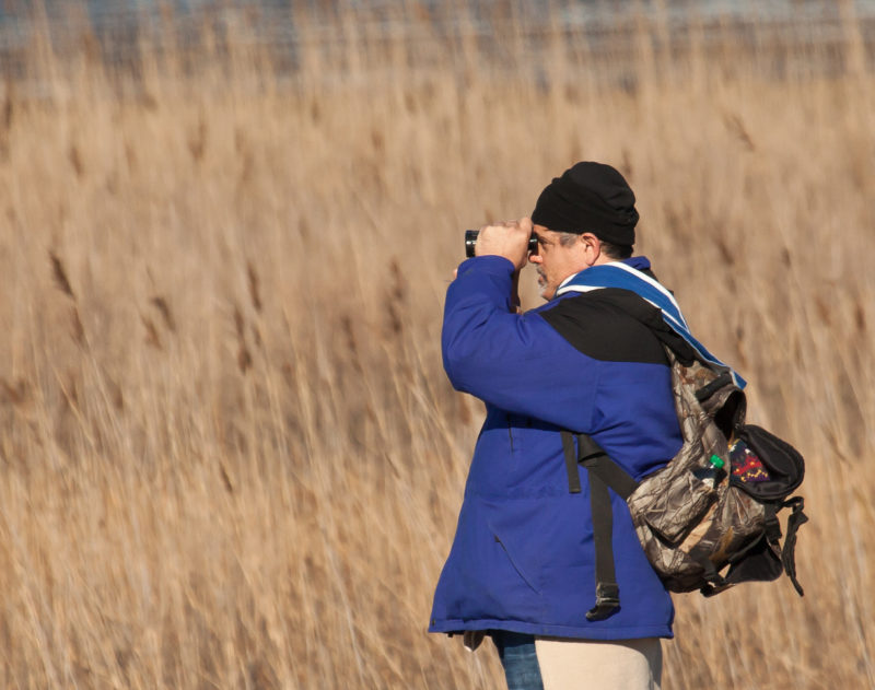 Ned helping on a winter survey on the Virginia Barrier Islands.