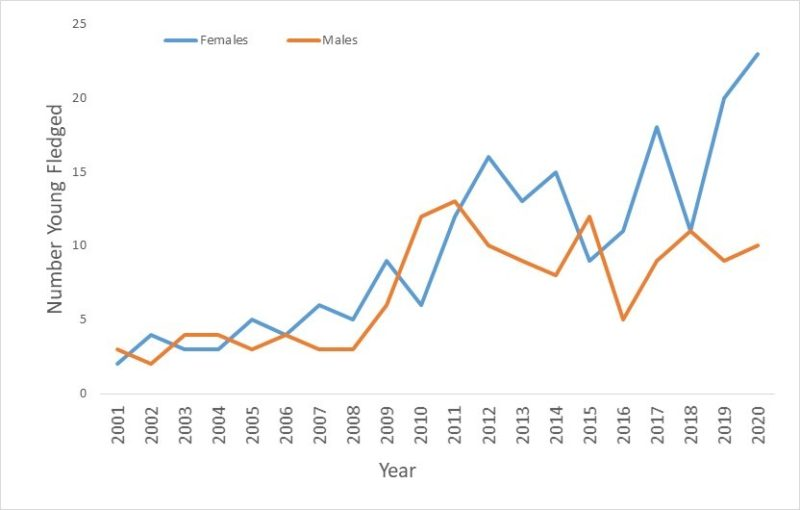 line graph of male and female woodpeckers in VA