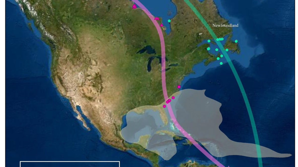 Stylized map of migration pathways for Mackenzie Delta and Hudson Bay whimbrel populations