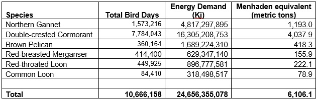 bird days, energetic demand and menhaden equivalents table